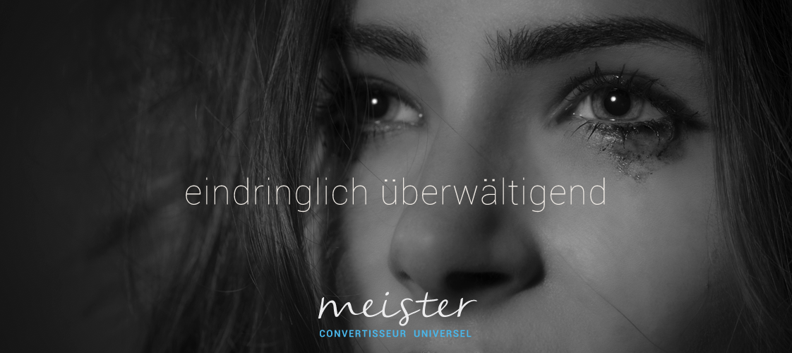 img_produit_meister-DE
